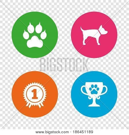 Pets icons. Cat paw with clutches sign. Winner cup and medal symbol. Dog silhouette. Round buttons on transparent background. Vector