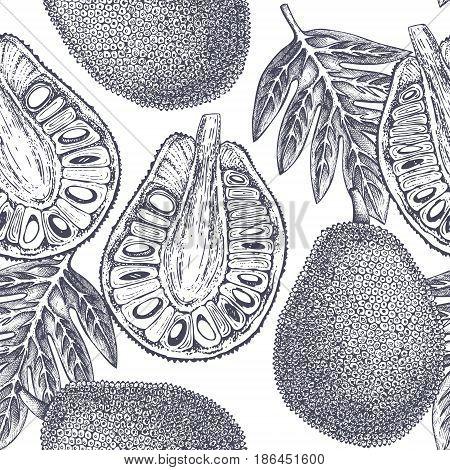 Tropical hand drawn illustration. Engraved botanical sketch. Jack fruit seamless pattern.