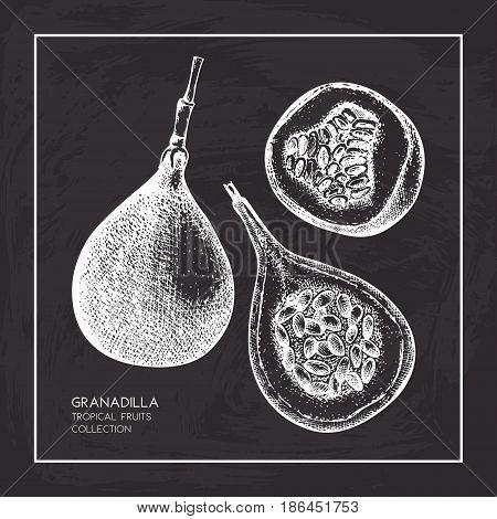 Engraved botanical sketch. Passion fruit design on chalkboard