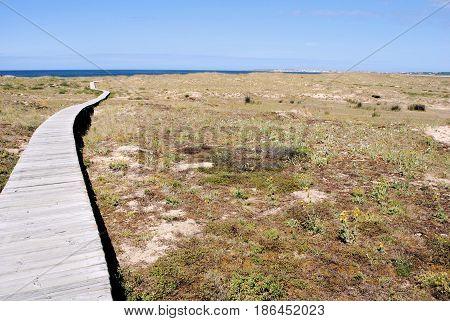 wooden boardwalk in reserve in north of spain