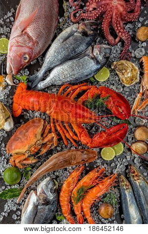 Whole lobster with seafood, crab, mussels, prawns, fish, salmon steak, octopus, oyster and other shells served on crushed ice.