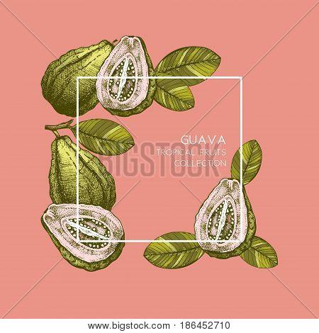 Engraved botanical sketch. Vintage poster. Tropical plant design. Wedding template
