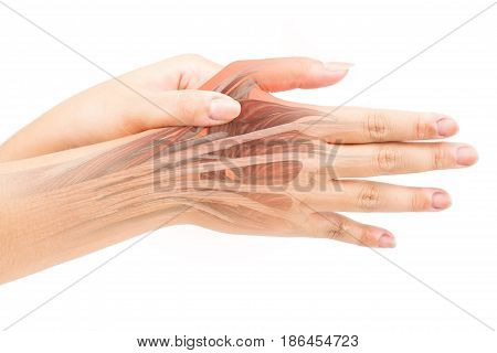 finger muscle pain white background finger injury