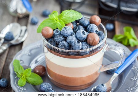 Delicious  Three Layered Chocolate Mousse Dessert, Devorated With Fresh Blueberry