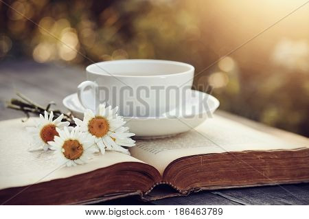 White porcelain cup camomiles and the open old book on a wooden table