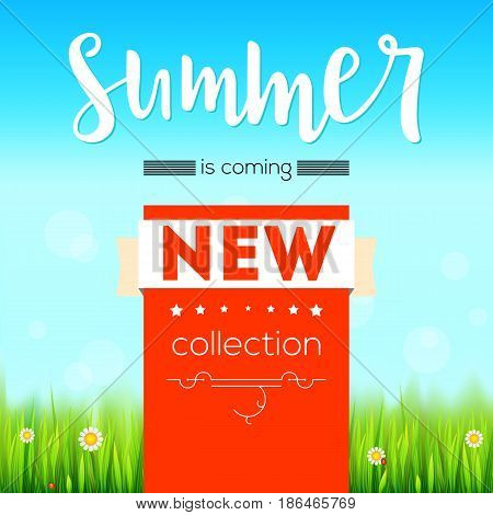Summer new collection banner. Vintage style text poster with graphic elements, blue summer sky, green, lush grass, daisies and ladybugs. Template, mock-up online shopping, advertising, magazines.