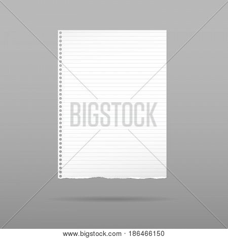 Ripped white notebook, copybook paper sheet with shadow on gray background