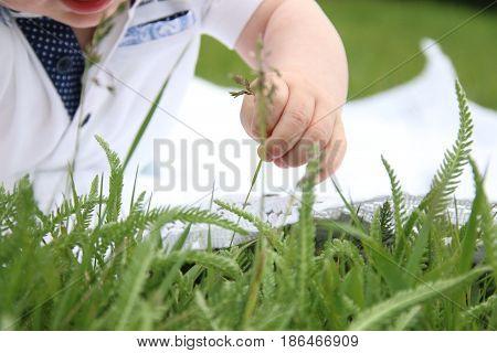 Baby hand close up. Parenthood, family, children idea.