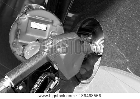 put in diesel gasoline fuel in car at gas station. black and white photo
