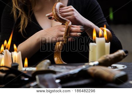 Sacrificial Ritual Witch With A Snake