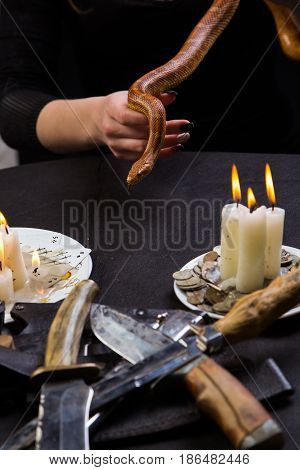 A Snake Helps You Hold The Magic Ritual Witch