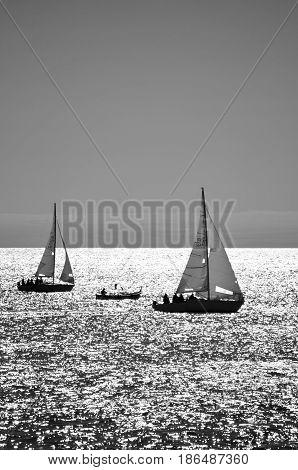 Incontri tra barche a remi e a vela