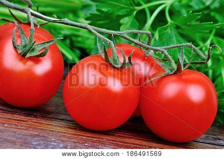 Group of tomatoes and parsley on wooden table
