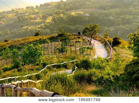 Euganean Hills viewpoint Pianoro del Mottolone curve trail Padua Italy