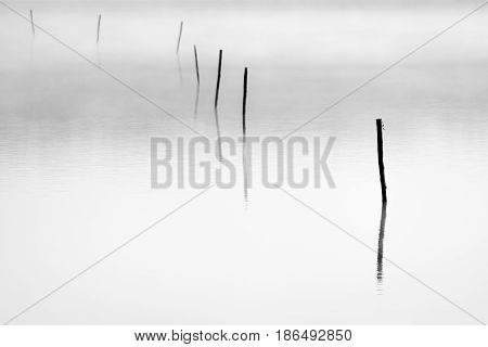 Background of lake plate with sticks and fog above.