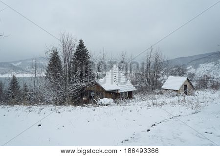 Small houses in winter near Mavrovo lake in Macedonian republic, fir trees