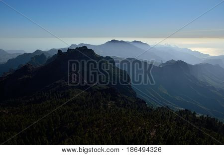 Pine forest and mountains, summit of Gran canaria, Canary islands