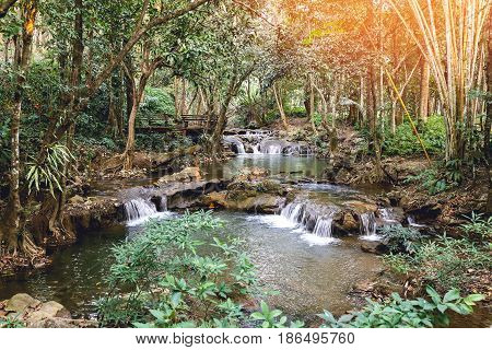 waterway in plentifully tropical rainforest with flare and vintage tone