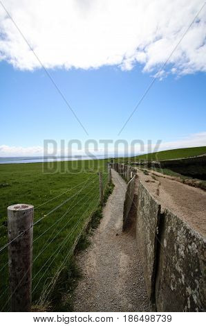 Dirt path between stone fence and wire fence near field in Ireland