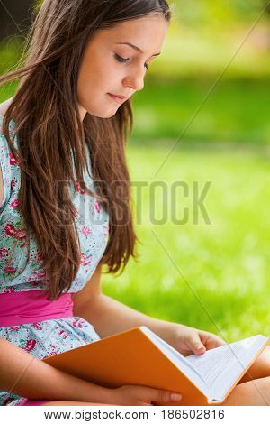 Reading woman literacy education knowledge young woman female