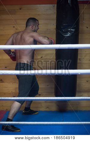 professional muscular kick boxer training on a punching bag while preparing for the next fight