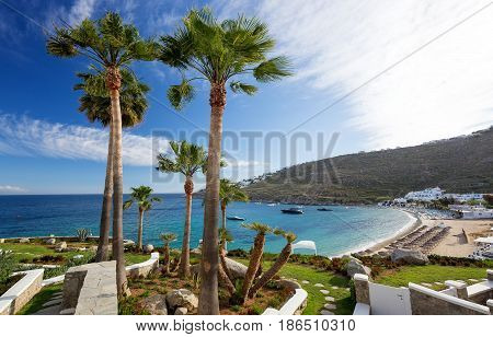 Panorama in Mykonos Cyclades Greece. Palm trees in foreground