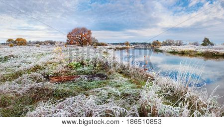 Cold autumn morning in Belarus. Scenic autumn landscape oak grove with yellowed leaves near the river and frost on the grass. Panoramic views of the river and lonely yellowed oak