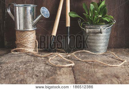 Garden Tools, Shovel, Rake, Watering Can, Bucket, Tablets For Plants, Flower Daisy In A Flowerpot On