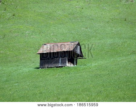 old barn in a meadow , barn and a meadow spring