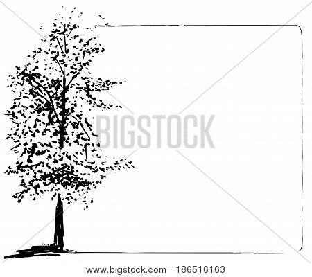 Vector Trees collection. Ink sketched grunge frame
