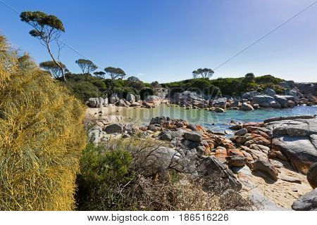 Turquoise waters with orange lichen growing on granite rocks formations, rocky coastline at Skeleton Bay, part of Binalong Bay, Bay of Fires in Tasmania, Australia