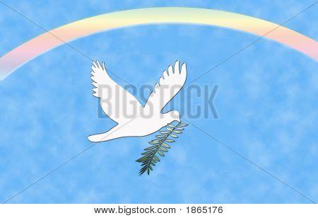 Peace Dove Rainbow
