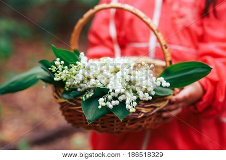 a basket of lilies of the valley in the hands of the girl close-up