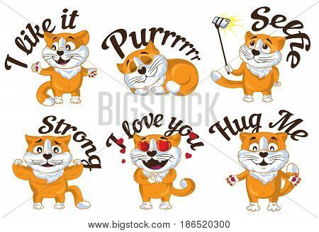 Set of cartoon vector ginger cats. Vector illustration.
