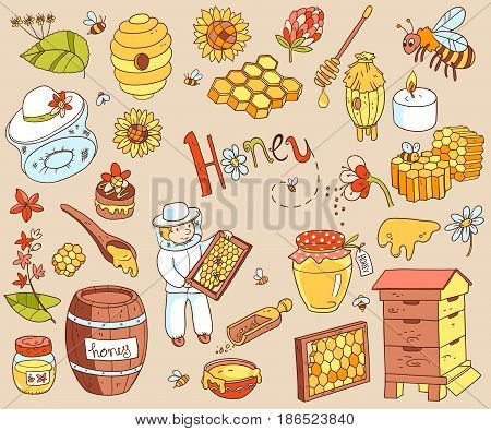 Vector honey element doodle set with beehive, beekeeper, flowers, pollen, bee, hive and ready product. Color cute cartoon illustration