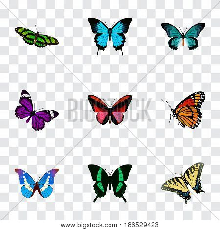 Realistic Callicore Cynosura, Papilio Ulysses, Checkerspot And Other Vector Elements. Set Of Moth Realistic Symbols Also Includes Brown, Bluewing, Purple Objects.