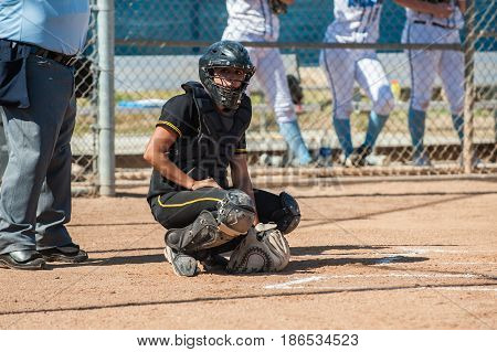 Softball catcher in black uniform looking through mask to receive the sign.