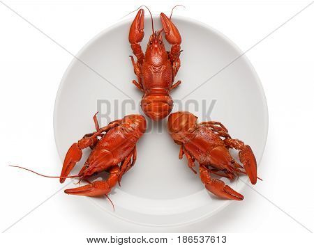 Three Boiled Crayfishes On White Ceramic Plate Isolated On White