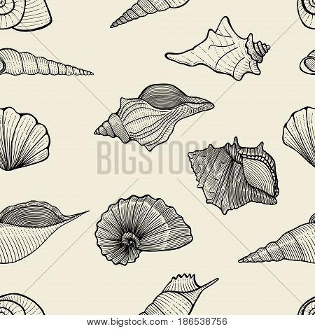 seamless pattern background of seashells. vector illustration