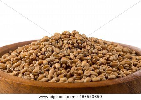 Wheat Grain In Bowl