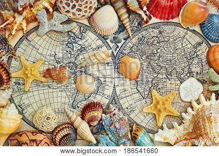 TALLINN, ESTONIA - APRIL 12, 2017: Sea shells on a vintage map