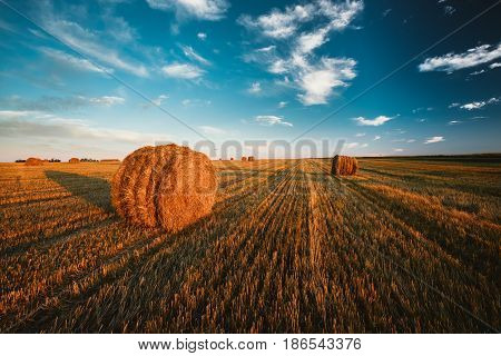 Rural Landscape Field Meadow With Hay Bales After Harvest In Sunny Evening At Sunset In Late Summer. Blue Sunny Sky.