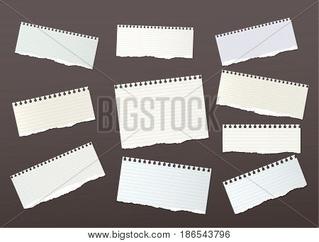 Pieces of ripped ruled, note, notebook, copybook paper strips