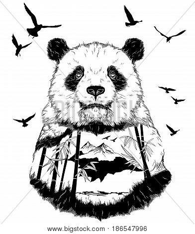 Vector Double exposure, Hand drawn panda partrait for your design, wildlife concept
