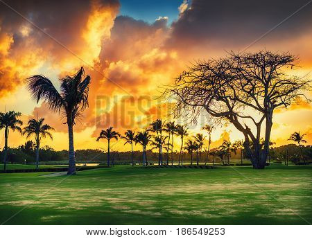 Tropical golf course at sunset Dominican Republic Punta Cana