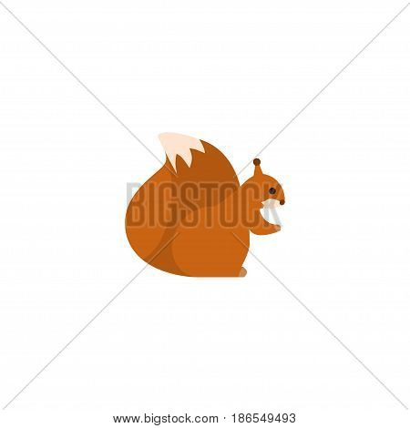 Flat Squirrel Element. Vector Illustration Of Flat Predator  Isolated On Clean Background. Can Be Used As Predator, Squirrel And Nut Symbols.