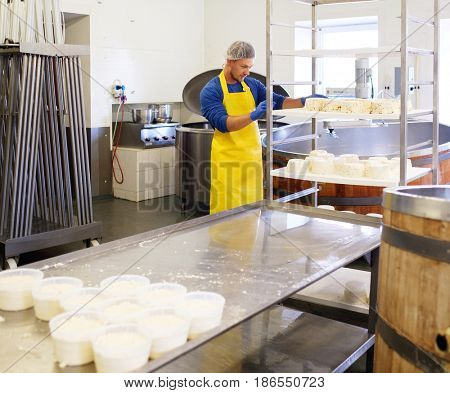 Handsome cheesemaker making curd cheese in his factory.