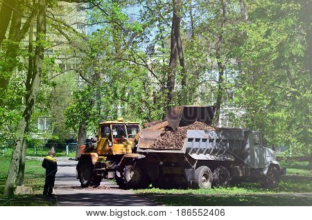 The City Improvement Team Removes The Fallen Leaves In The Park With An Excavator And A Truck. Regul