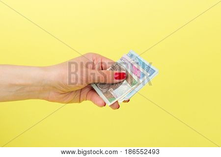 Polish Zloty In The Woman's Hand, Yellow Background