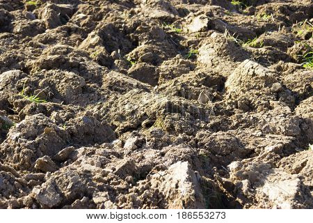 Ploughed farmland in detail Outdoor Shooting in Germany